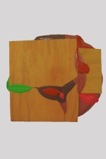 Lobe 2015 Acrylic, wood 485 x 540 mm
