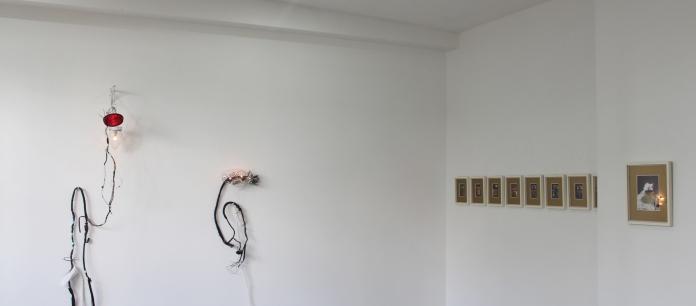 Installation shot of Fiona Johnstone's works