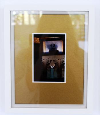 Pavo (ii) plinth - digital print on Ilford Galerie Metallic Gloss 260gram paper, edition of 1